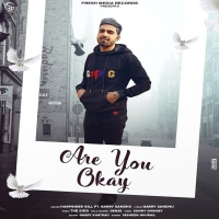 Are You Ok Garry Sandhu, Harpinder Gill Cover